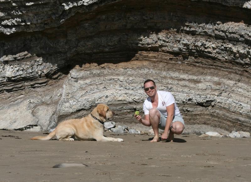 Labrador tennis ball obsession Hendrys Dog Beach