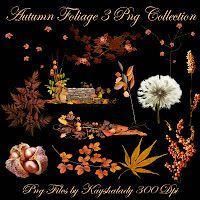 Autumn Foliage 3 PNG Tubes