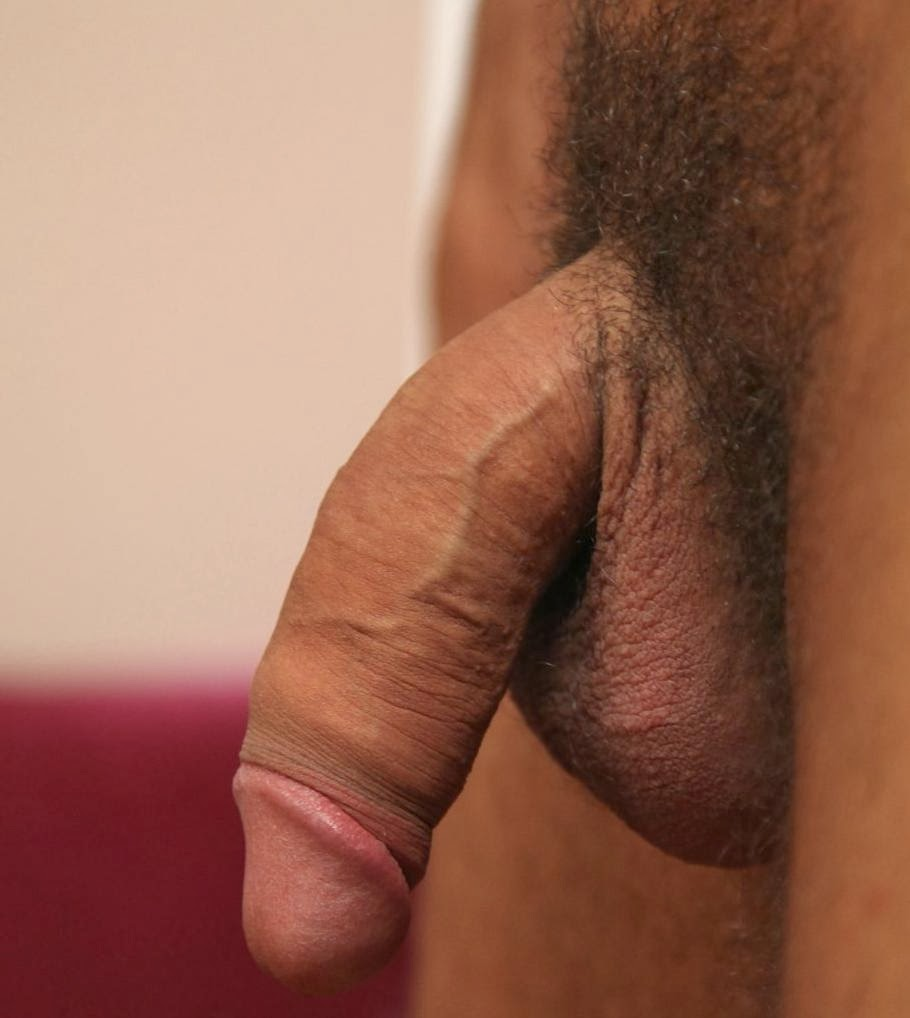 Soft cock dick pictures image