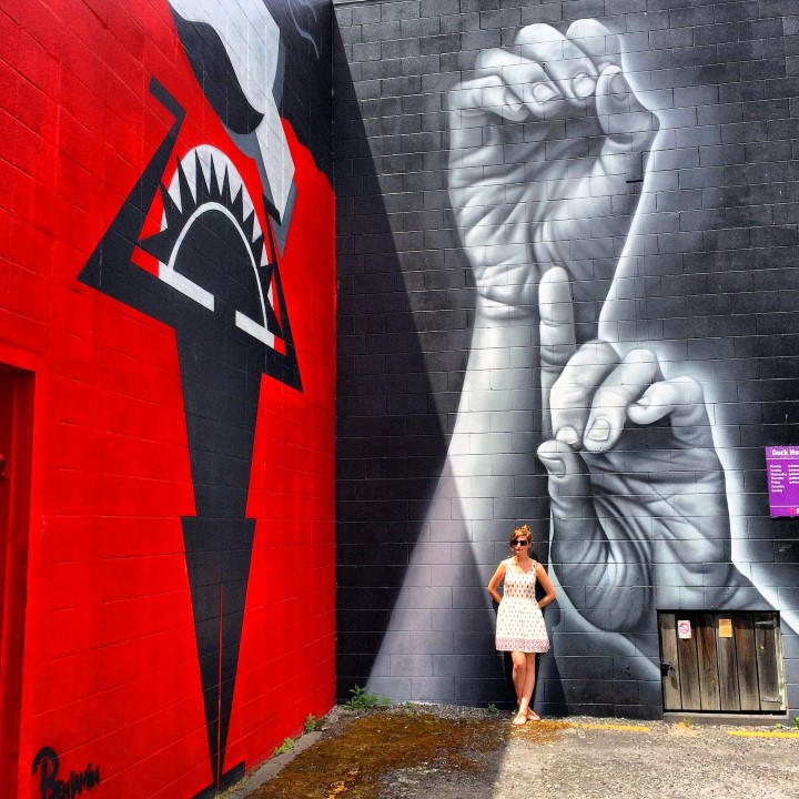 Kiwi Experience blog