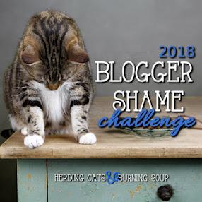2018 Blogger Shame Challenge