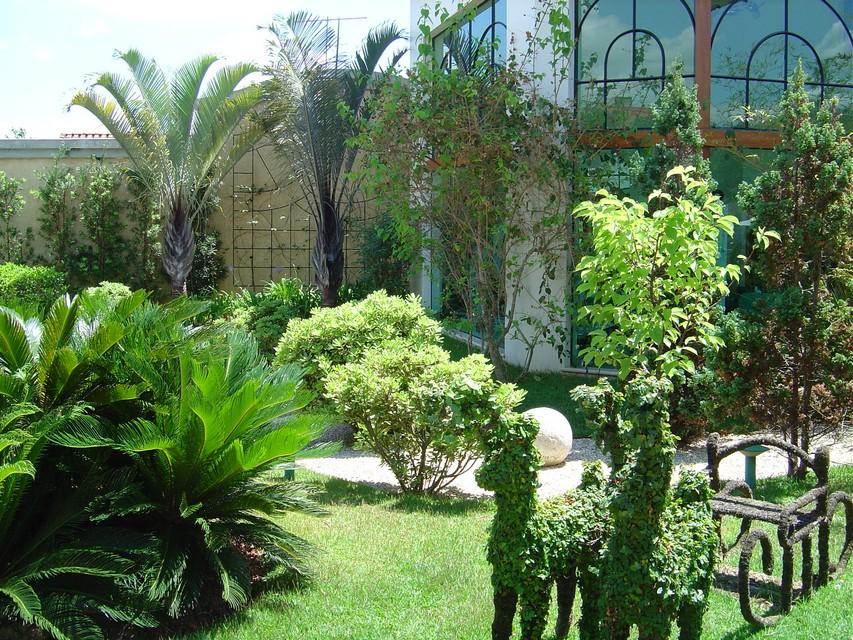 fotos jardim e paisagismo:Paisagismo Residencial