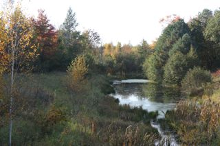 photo of small pond and autumn foliage
