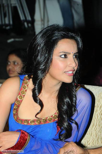 Priya+Anand+blue+(3)