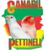 CANARIL PETTINELI