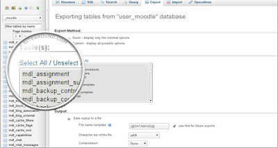 MySQL Export