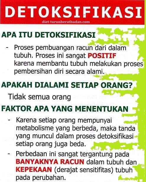 Gejala Detoksifikasi | Fungsi Detoksifikasi | Pembuangan racun Toxin
