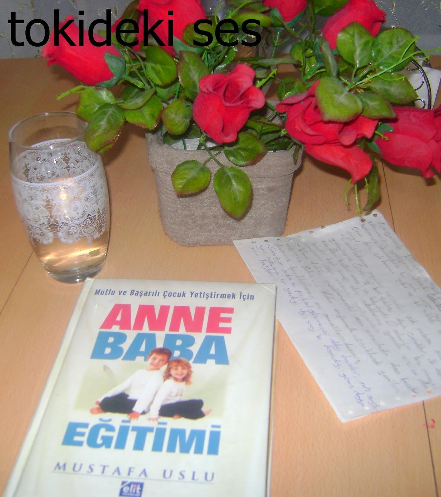 Mutlu ve Başarılı Bir Çocuk Yetiştirmek İçin Anne Baba Eğitimi Kitabını Okudum