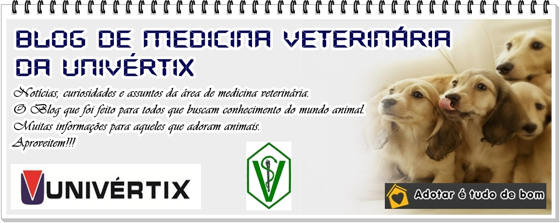Blog de Medicina Veterinária