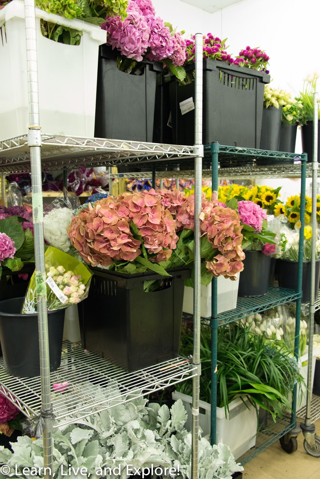 A Day Of Flowers From The Wholesaler To A Gorgeous Arrangement