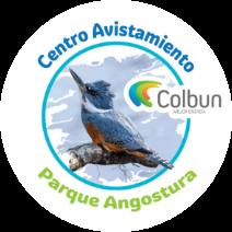 Enlace Parque Angostura COLBÚN