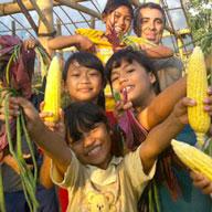 Volunteering Programs Bali