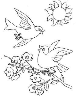 Desenhos Para Colori estação da primavera flores passaros borboletas desenhar