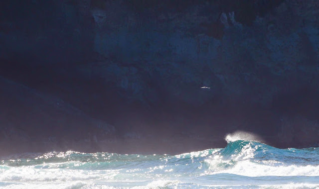 Sata Arlines Azores Pro 2014 9 Foto ASP Damien%2BPoullenot