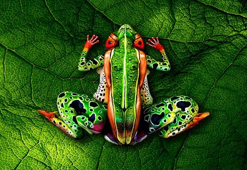 01-Frog-Body-Paint-Johannes-Stötter-Musician-Fine-Art-Body-Painter-www-designstack-co