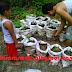 Keuntungan Memanfaatkan Pekarangan Rumah untuk Budidaya Cabe Rawit dalam Karung