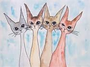 Kattebloggen
