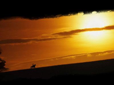 [Crítica] Caballo de batalla (War Horse) - La historia de un caballo milagroso