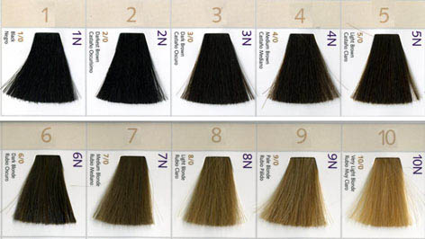 Eufora Hair Color Chart Ibovnathandedecker