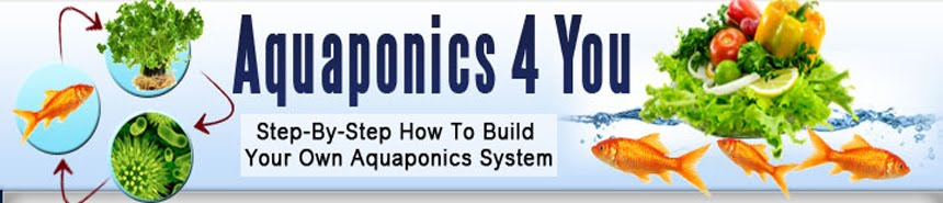 Aquaponics 4 You ++GET DISCOUNT NOW++