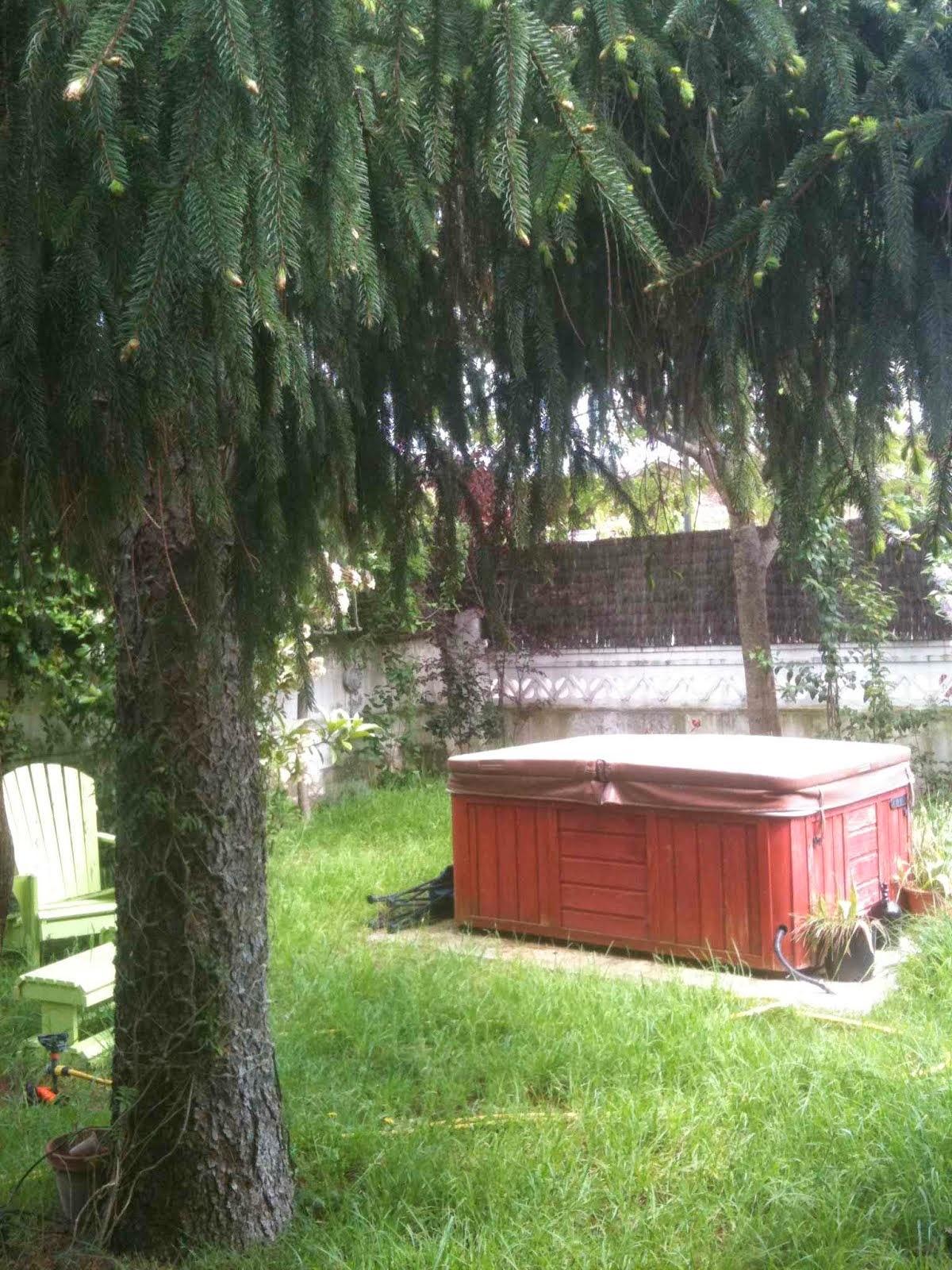 jardí amb jacuzzi