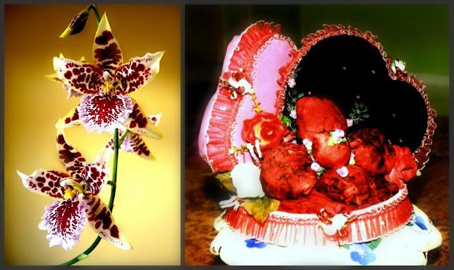 ♥ k0leksi orkid ♥