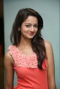 Cute Shanvi Glamorous Photos Gallery-thumbnail-15