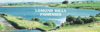 lomond hills fishery