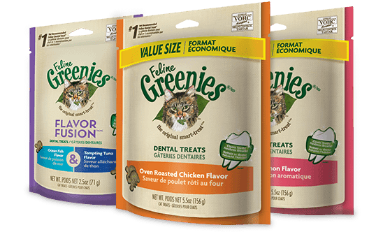 Greenies Dental Treats | Exclusively Cats Veterinary Hospital, Waterford, MI