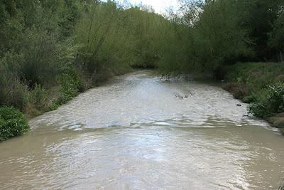Río Guadalete
