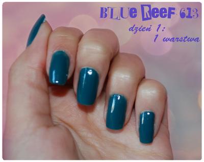 blue reef 613