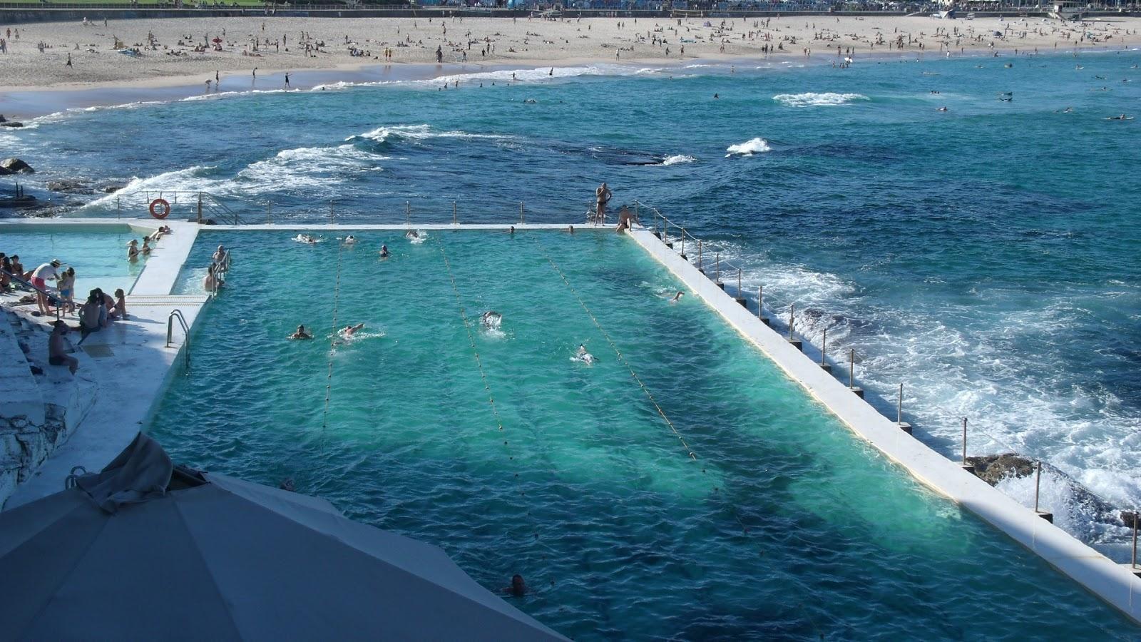 Sydney Travel Sandstone Cliff Walks Best Sydney Coastal Walk Bondi Beach