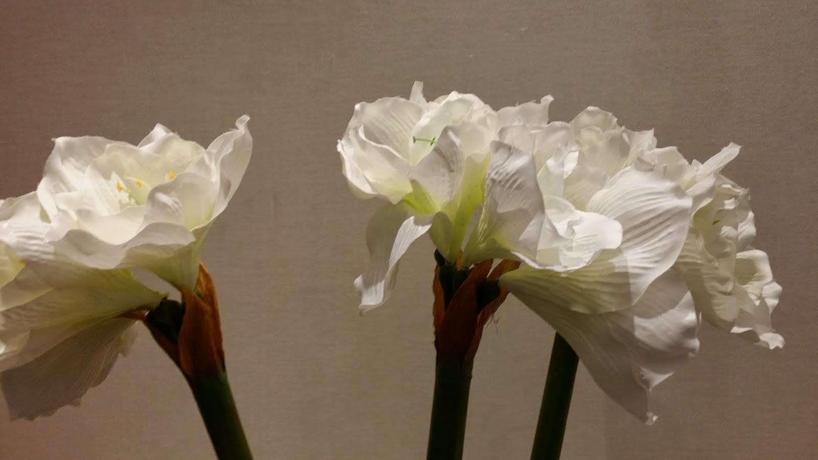 Flores decoración en tienda