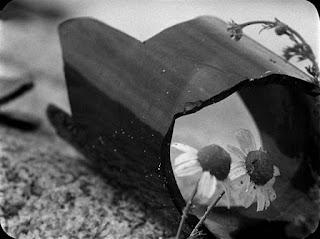 Fotograma de la película Finis Terrae de Jean Epstein (1929). La imagen muesta dos margaritas junto a una botella de vidrio rota