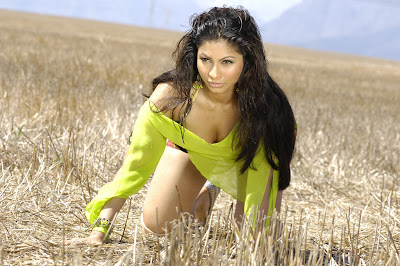 tanisha mukherjee hot photoshoot