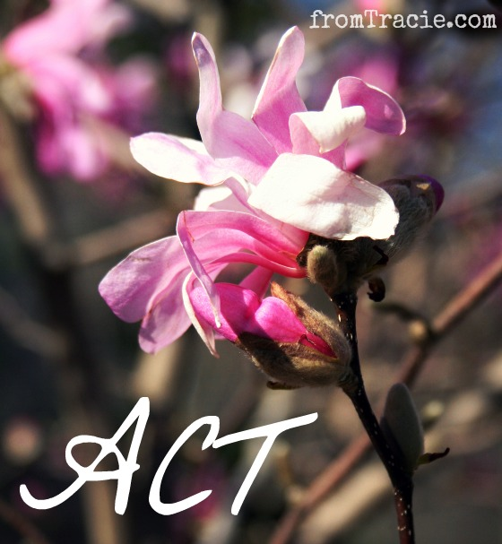 ACT as in action