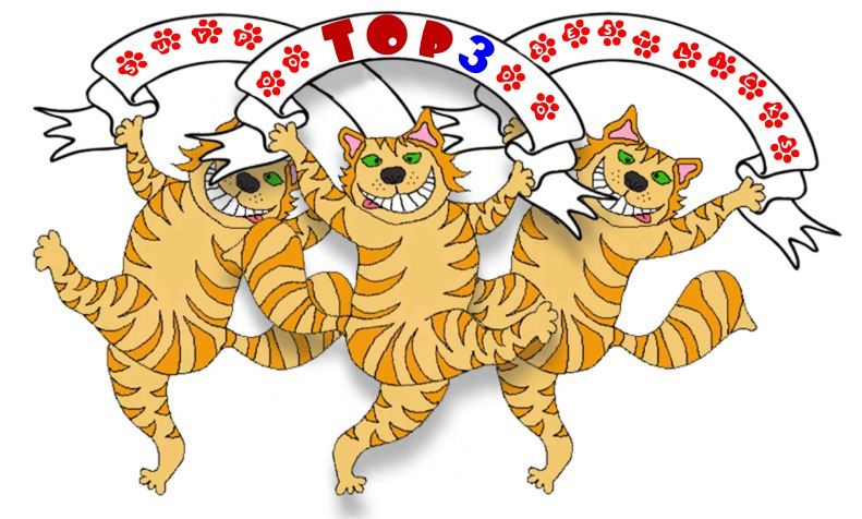 Cats - Jan 2021