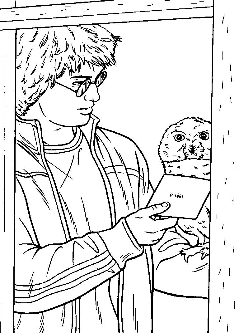 Cartoons coloring pages harry potter coloring pages for Harry potter coloring pages