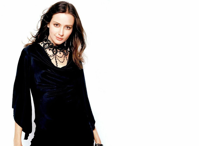 Amy Acker Wallpapers Free Download