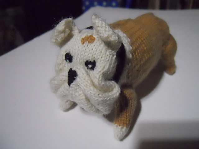 Knitting Patterns For Bulldog Sweaters : anna knits, etc.: anna knits - knit bulldog update 1