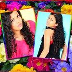 Montagem de foto com flores de prímula