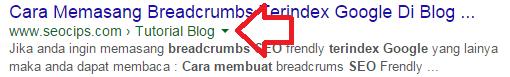 Breadcrumb Di Penelusuran google