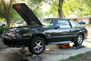 1987 Ford Mustang 5.0 Fox Body