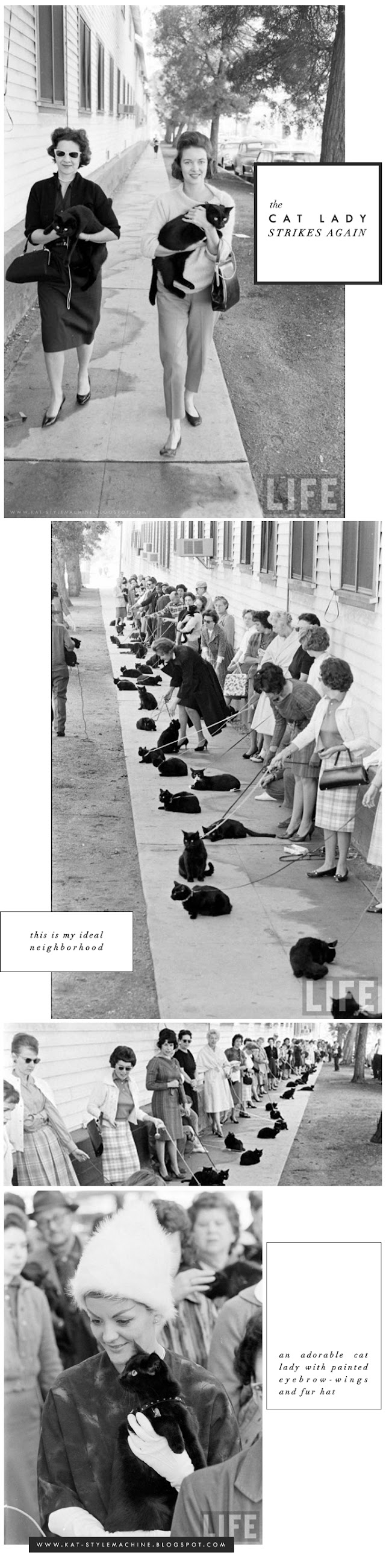 vintage photo stylish women walking cats