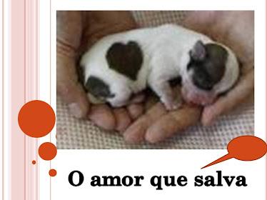 adotar é um ato de amor