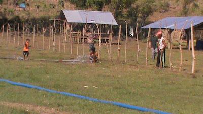 kegiatan pemagaran areal ternak dan penanaman jagung