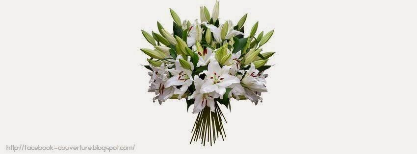 Couverture facebook hd fleur de lys