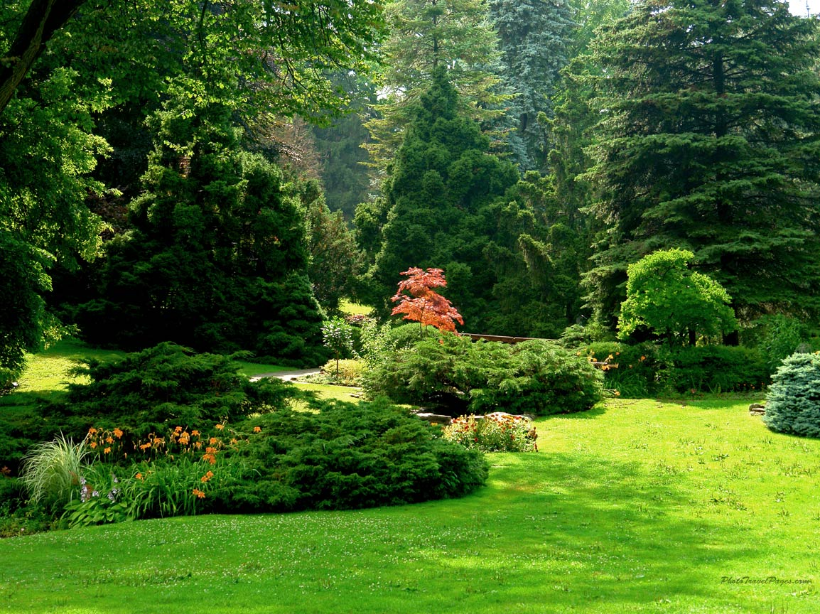 Sunny Gardens 1152