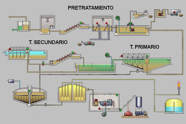 controlled vs automatic processes a modified
