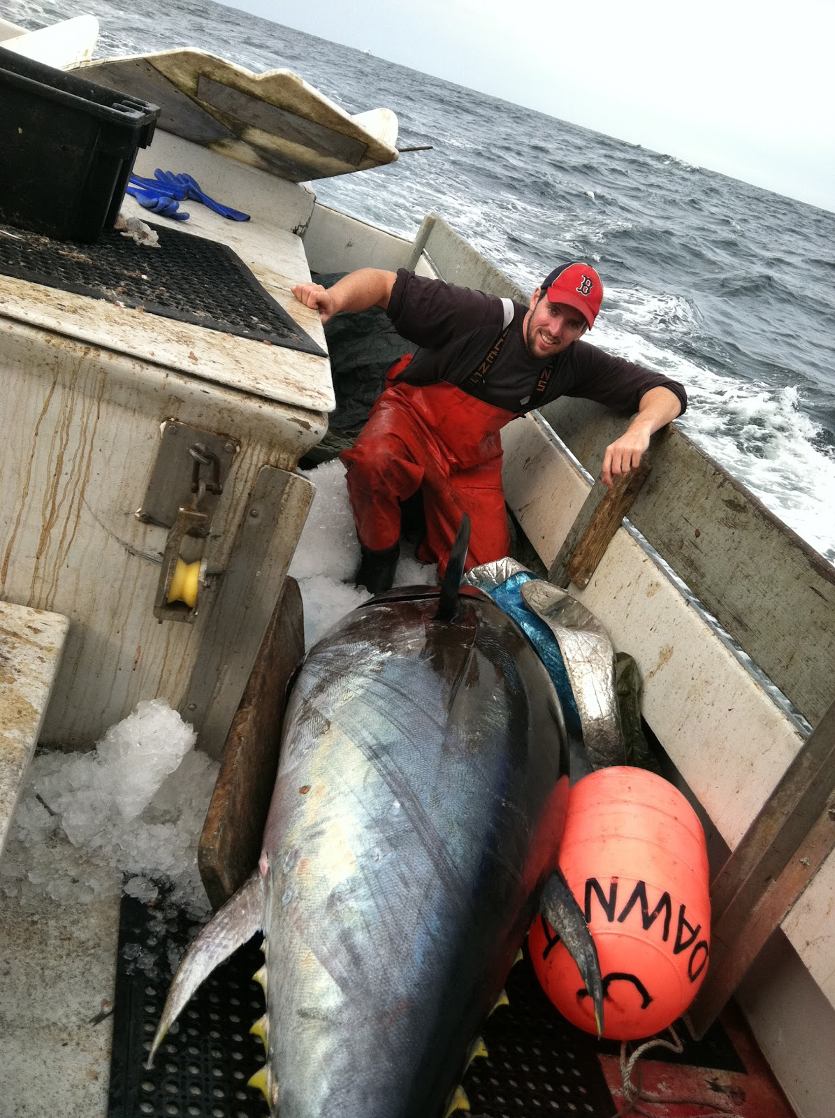 Who fishes matters tuna fishing the good the bad and for Does tuna fish have scales